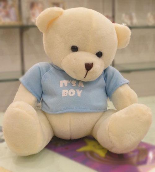Sky Blue Dimpy Teddy Bear For Boys