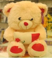 Pillow Holding Dimpy Bear