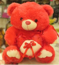 Red Teddy Bear Holding a Heart