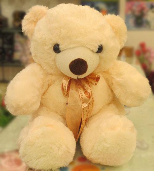 Dimpy Teddy